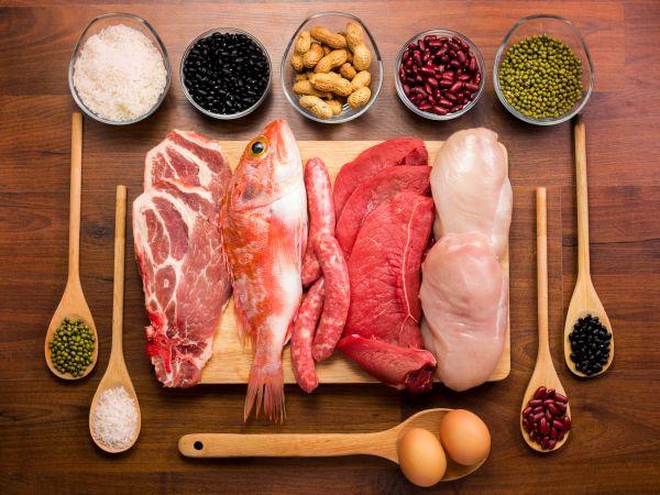 proteini